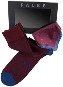 Falke Dot Sock Gift Box Barolo