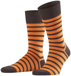 Falke Even Stripe Sock Bruin