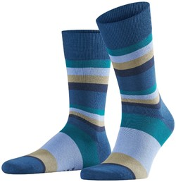 Falke Filter Stripe Night Sky