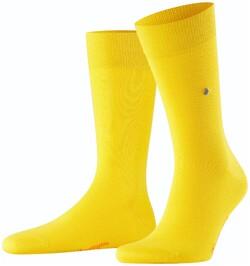 Burlington Lord Socks Sokken Geel