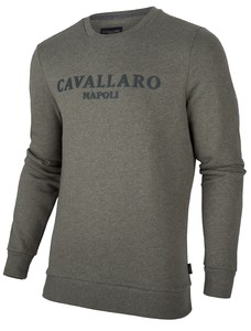 Cavallaro Napoli Mirko Sweat Trui Groen