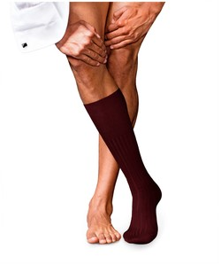 Falke No. 13 Finest Piuma Cotton Knee High Knee-Highs Barolo