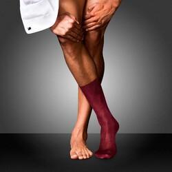 Falke No. 4 Pure Silk Socks Socks Barolo