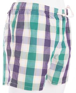 Gant Ruit Swim Short Multicolor