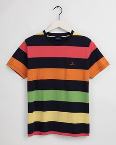 Gant Barstripe Round Neck T-Shirt Multicolor