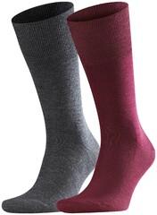 Falke Airport Sock 2-Pack Barolo