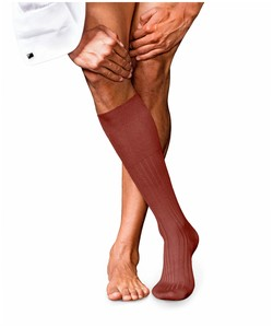 Falke No. 13 Finest Piuma Cotton Knee High Rust