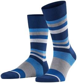 Falke Filter Stripe Royal Blue