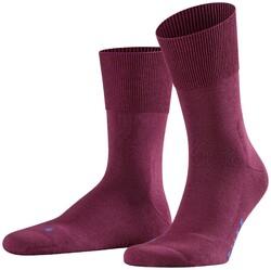 Falke Run Socks Pinot Noir