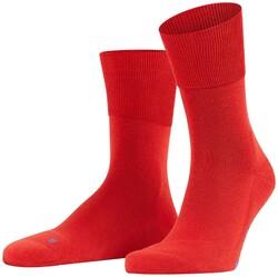 Falke Run Socks Rooibos